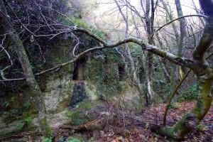 escursione marturanum